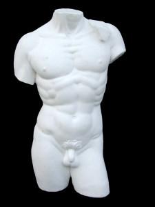 Anatomia LA 10 Torso tuttotondo Davide di Michelangelo