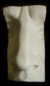 Naso del Davide di Michelangelo