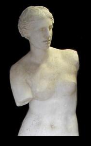Anatomia LA 15 Torso Venere di Milo