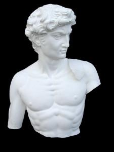 Anatomia LA 24 Torso tuttotondo Davide di Michelangelo