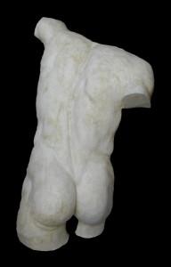 Anatomia LA 34 Torso posteriore Gladiatore Borghese