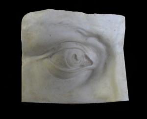 Anatomia LA 36 Occhio