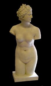 Anatomia LA 9 Torso tuttotondo Venere dei Medici